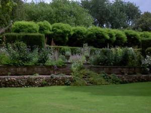 Figure 4. Terrace Planting